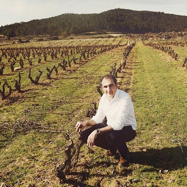 Responsable de la bodega en el viñedo