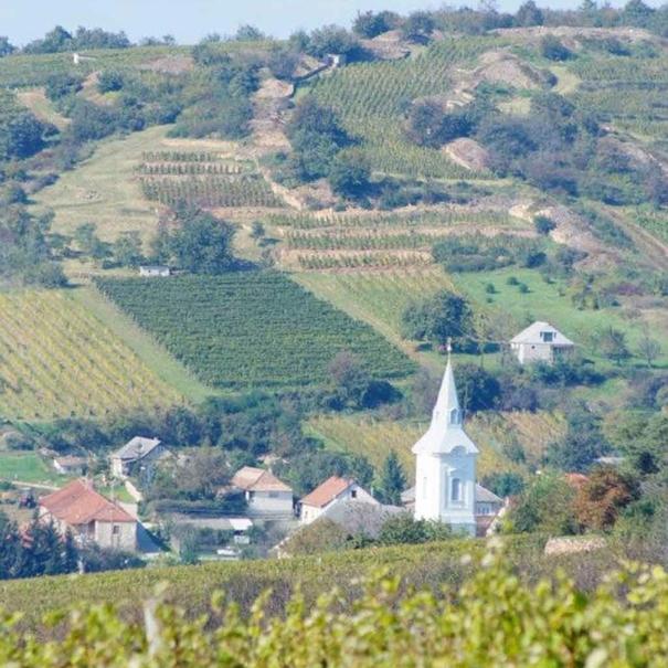 La región de Tokaj