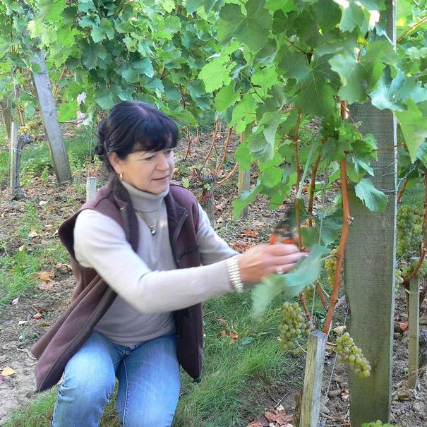 Murielle Andraud en la viña