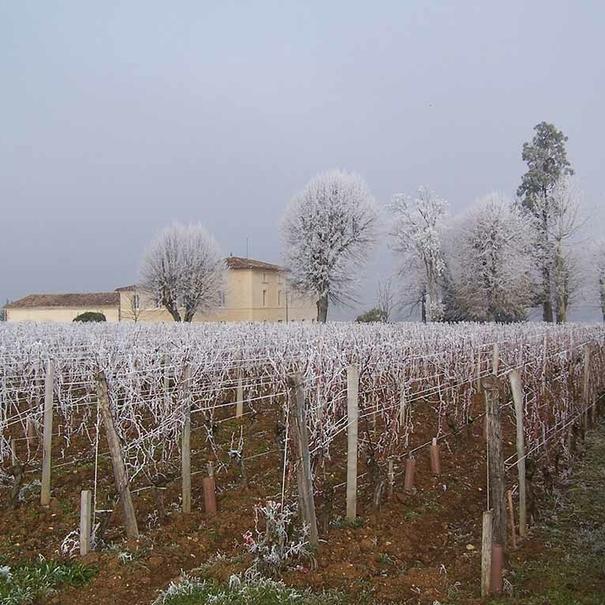 Paisaje de invierno en el château
