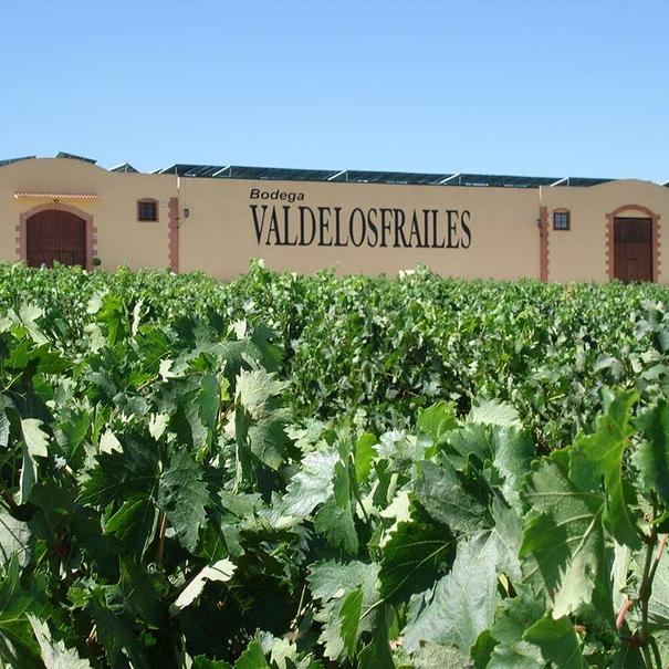 Vista de la bodega con los viñedos en primer término