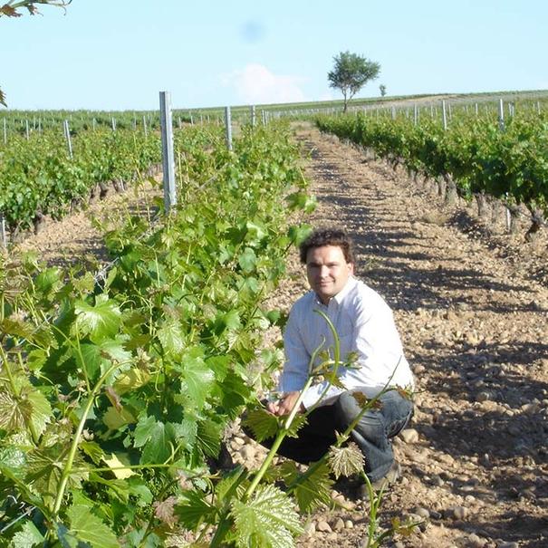 Eduardo Poza en el viñedo