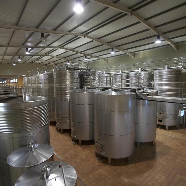 Sala de vinificación