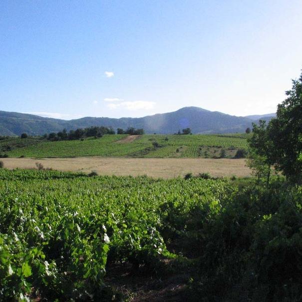 Panorámica del entorno en El Bierzo