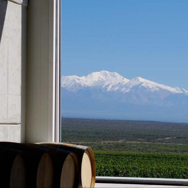 Las montañas nevadas vistas tras el cristal de la bodega