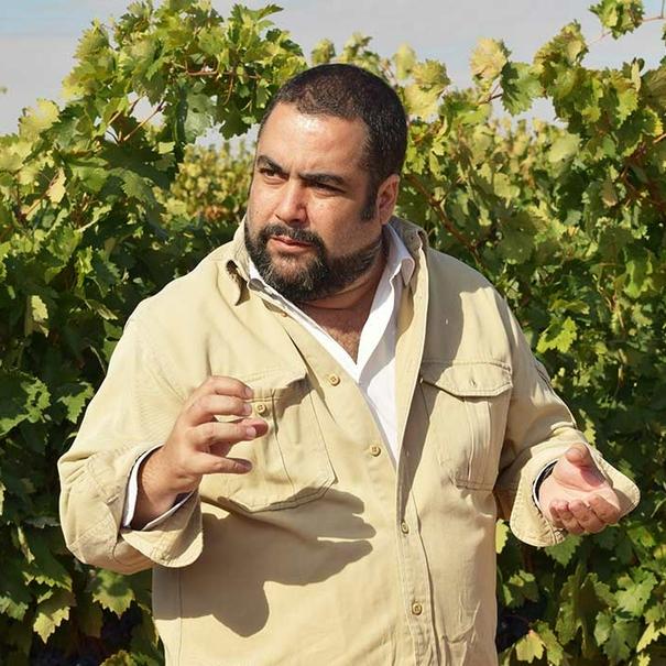 Manuel Herrera en el viñedo