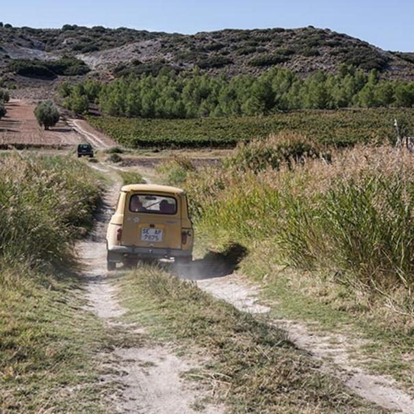 Camino a la finca El Horcajo
