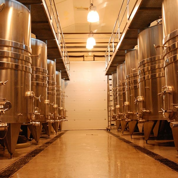 Sala de vinificación.