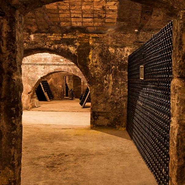 Botellero excavado bajo tierra