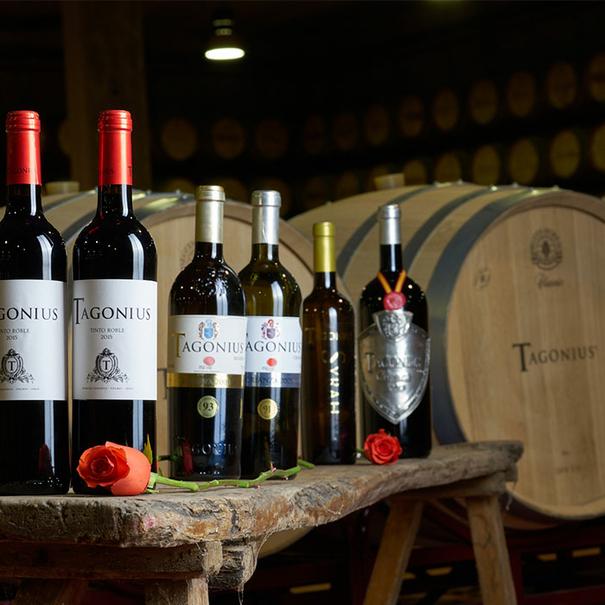 Gama de vinos Tagonius