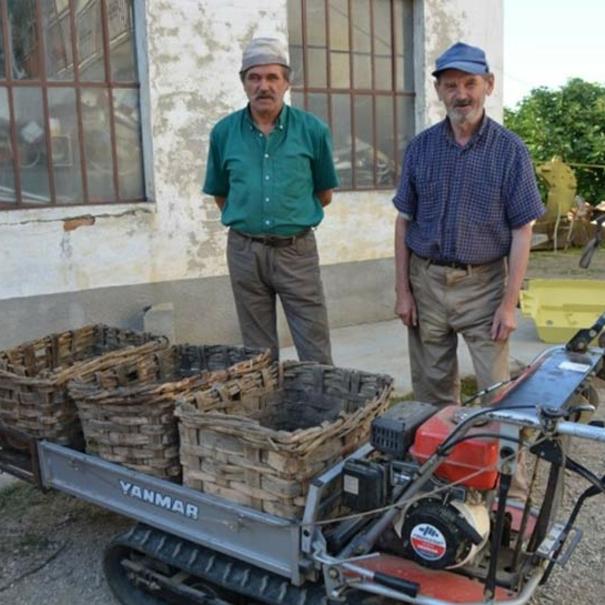 Agricultores de bodega Toso