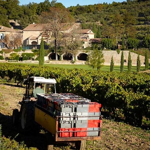 Tractor en la propiedad