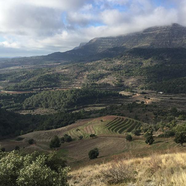 Paisaje Cornudella de Montsant