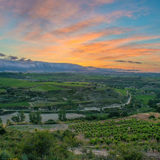 Panorámica de la Rioja Alta