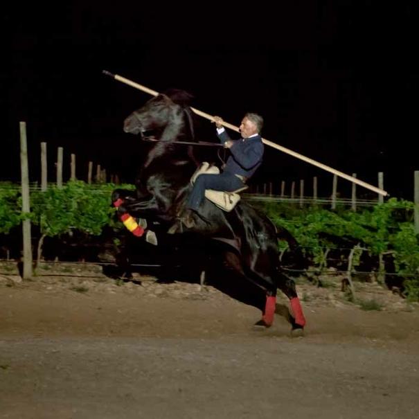 caballo de la yeguada
