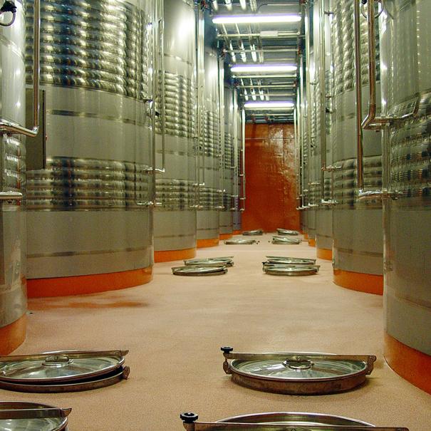 Sala de depósitos, donde tiene lugar la fermentación
