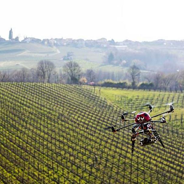 Drones para el seguimiento del viñedo