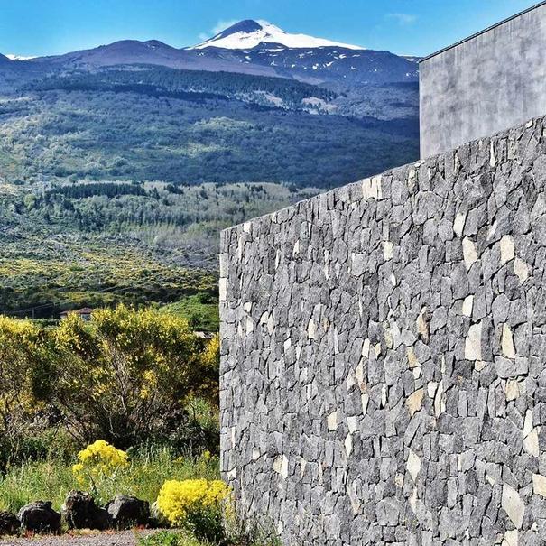 Viñedos en el Etna