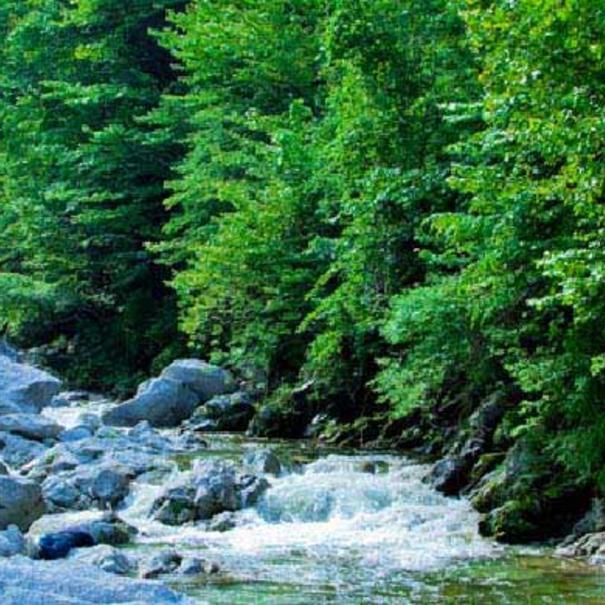 Aguas del río Ojira