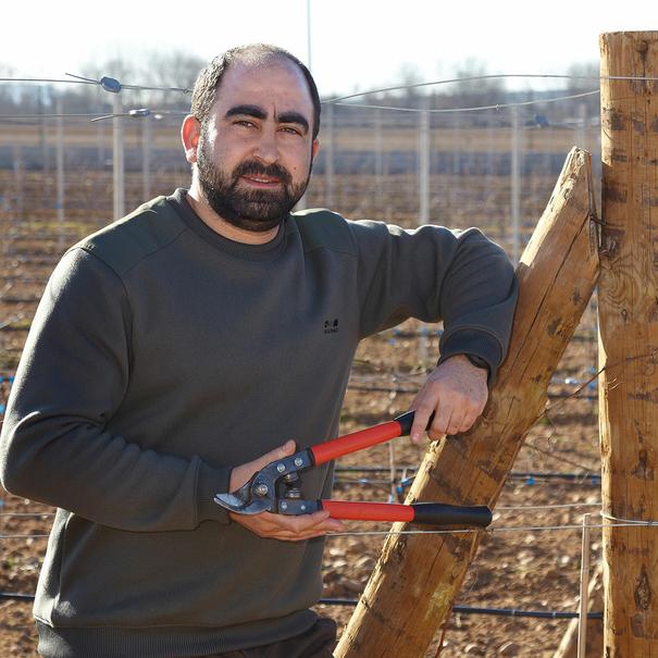 Juan, cuidando del viñedo