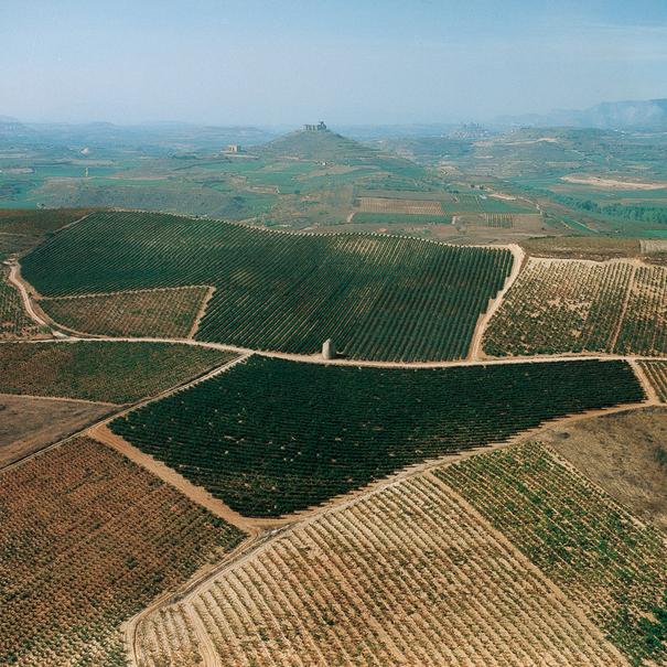 Los viñedos de Sierra Cantabria vistos desde el aire