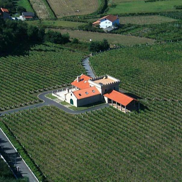 Imagen aérea de los viñedos y la bodega