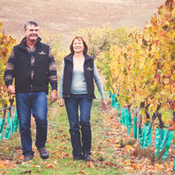 Paseo por el viñedo