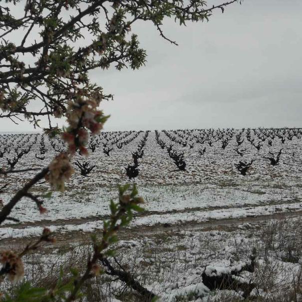 Nieve en abril de 2012