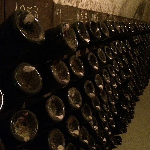 Las botellas en rima