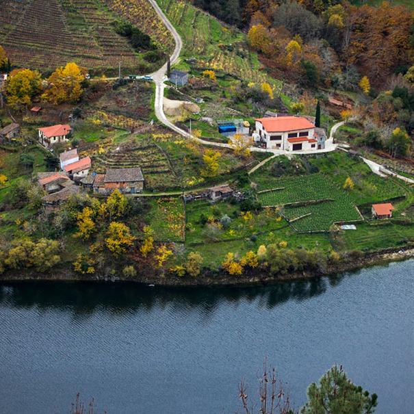 Imagen de las laderas del río con el edificio de Ronsel do Sil