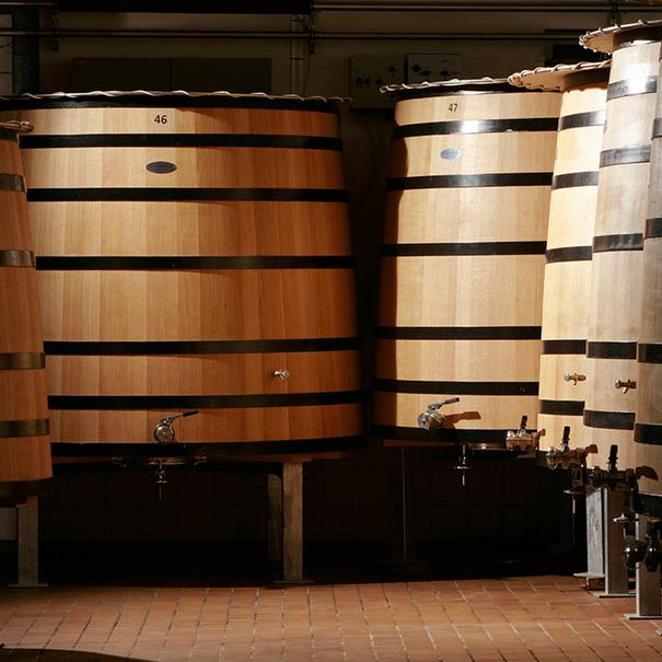 Tinos de fermentación