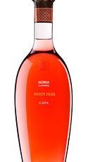 Sumarroca Núria Claverol Rosé 2014