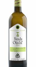 Senda Olivos